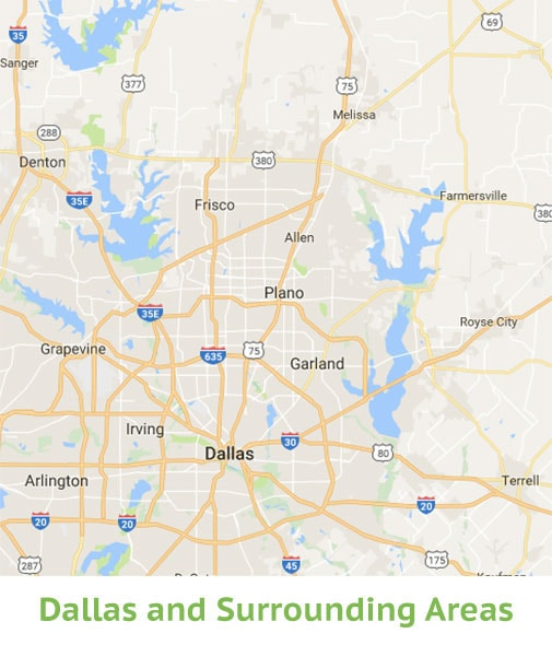 Dallas Lice Removal