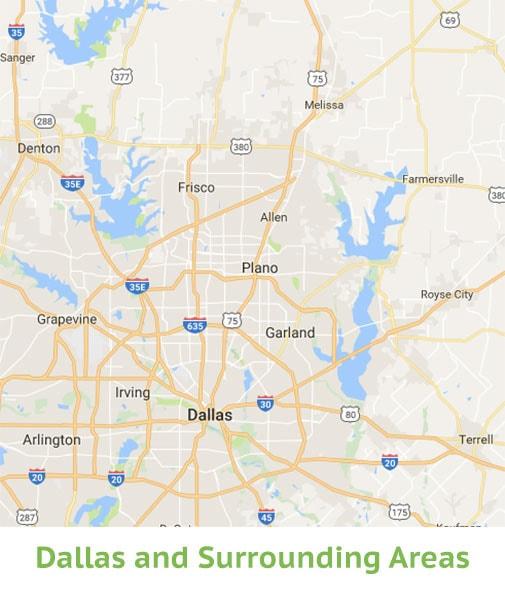 Dallas Lice Removal